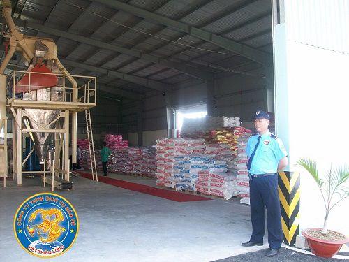Công ty bảo vệ quận 6 Việt Thiên Long hiệu quả, dịch vụ uy tín