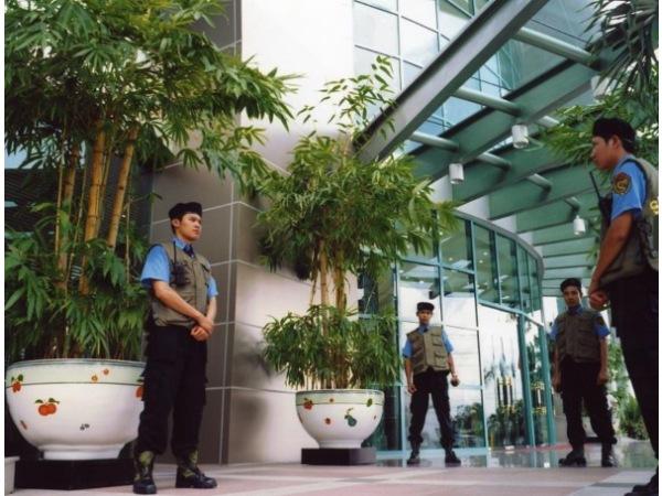 Dịch vụ bảo vệ yếu nhân, VIP